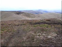 NT8515 : Pennine Way west of Windy Gyle by Oliver Dixon