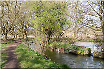SU4828 : Fast flowing drains feeding the River Itchen at Fallodon by Peter Facey
