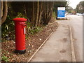 SU1002 : St. Leonards: postbox № BH24 50 by Chris Downer