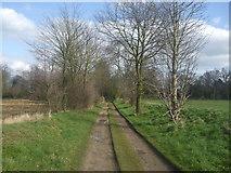 TM2384 : The dismantled Waveney railway by Ashley Dace