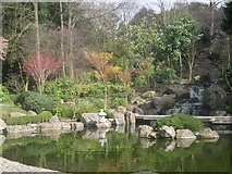 TQ2479 : The Kyoto Garden in Holland Park by Peter S