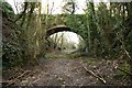 SX0071 : The Withered Arm - Bridge No143 - Pendavey Farm by Dave Oram