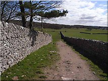 SD4576 : Footpath at Far Arnside by Oliver Dixon