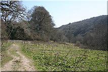SX4970 : Whitchurch: Drake's Trail 1 by Martin Bodman