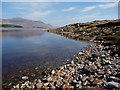 NH1865 : Loch Fannich by John Allan