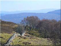NH5533 : Near Corriefoyness,looking towards Loch Ness by sylvia duckworth