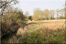 SU4726 : Water meadows near Compton by Peter Facey