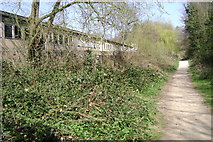 SP3065 : Milverton Riverside by Robin Stott