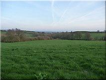 ST0215 : Mid Devon : Countryside & Fields by Lewis Clarke