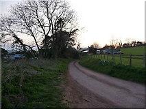 ST0215 : Whitnage : Whitnage Lane by Lewis Clarke