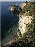 SX0551 : Cliff above Fanny's Beach by Derek Harper