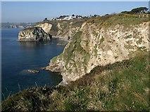 SX0551 : Cliffs, Carlyon Bay by Derek Harper