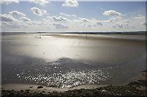 NU0842 : Pilgrim's Way, Holy Island Sands by Christine Matthews