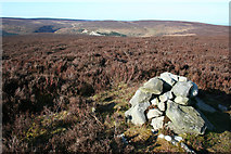 SJ2346 : Cairn on 511 m summit of Ruabon Mountain by Espresso Addict