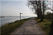 TQ8068 : Footpath signpost by the Saxon Shore Way by N Chadwick