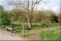 TQ8068 : Bench & post by the Saxon Shore Way, Sharp's Green Bay by N Chadwick