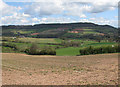 SO4715 : View towards Buckholt Wood by Pauline E