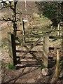SX7290 : Gate on path near Castle Drogo by Derek Harper