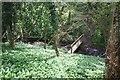 SJ4445 : Footbridge below Threapwood windmill by Dave Dunford
