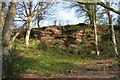 SJ4749 : Overton Scar by Dave Dunford