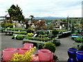 SO3808 : Raglan Garden Centre plant area 2 by Jonathan Billinger