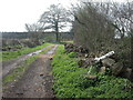 SU1013 : Alderholt, footpath by Mike Faherty