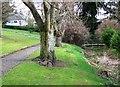 NN8522 : Mill Lade, Mcrostie Park, Crieff by Robert Bone