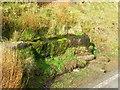 SD7148 : Walloper Well by John H Darch