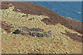 NG1953 : Sheepfold on Boreraig Hoe by John Allan