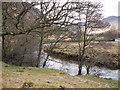NN1036 : River Kinglass by CBL