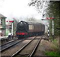 TG0939 : Holt Railway Station - a train arrives by Evelyn Simak