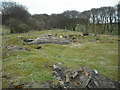NS8462 : Ruins: Fortissat mine by Jim Smillie