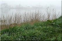 S7127 : Misty River Barrow by Graham Horn
