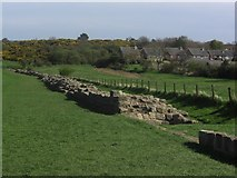 NZ1366 : Hadrian's Wall - Heddon-on-the-Wall by Anthony Foster