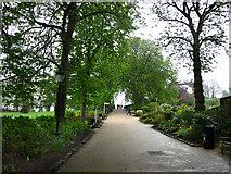 TQ3473 : Hill Rise, grounds of Horniman Museum by Chris Gunns
