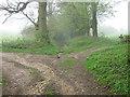 TQ5759 : North Downs Way crosses bridleway by David Anstiss