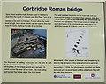 NY9864 : Corbridge Roman Bridge Information Board by wfmillar
