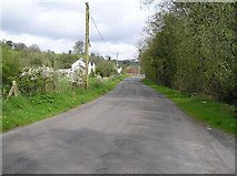 H6058 : Omagh Road by Kenneth  Allen