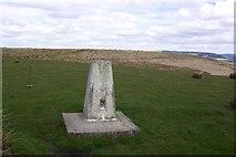 SS8393 : Trig Point FBM No. S2047 by John Morris