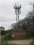 TQ5571 : Mobile Phone Mast near Darenth Grange by David Anstiss