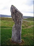 NB2133 : Stone portrait 2, Callanish by Andrew Curtis