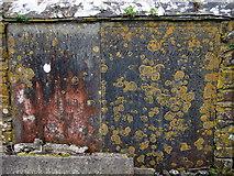 SM7525 : Lichened gravestones by ceridwen