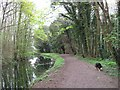 SP8609 : Wendover Arm: North of Perch Bridge the Canal has woods on either side by Chris Reynolds
