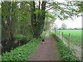 SP8609 : Wendover Arm: The Canal runs by a large field by Chris Reynolds