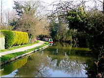 SP7089 : Market Harborough Arm, Grand Union Canal by Jonathan Billinger