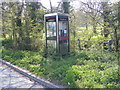 TM3865 : Telephone Box, Dorleys Corner by Adrian Cable