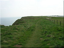 TA0983 : The Cleveland Way above Gristhorpe Cliff by JThomas