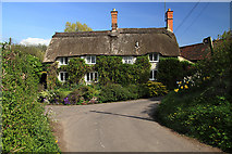ST5707 : Walnut Tree Cottage, Melbury Osmund by Mike Searle