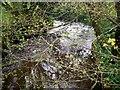SN1421 : Stream, Felin Cwrt, Login by welshbabe