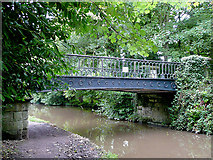 SJ9922 : Iron bridge at Great Haywood, Staffordshire by Roger  Kidd